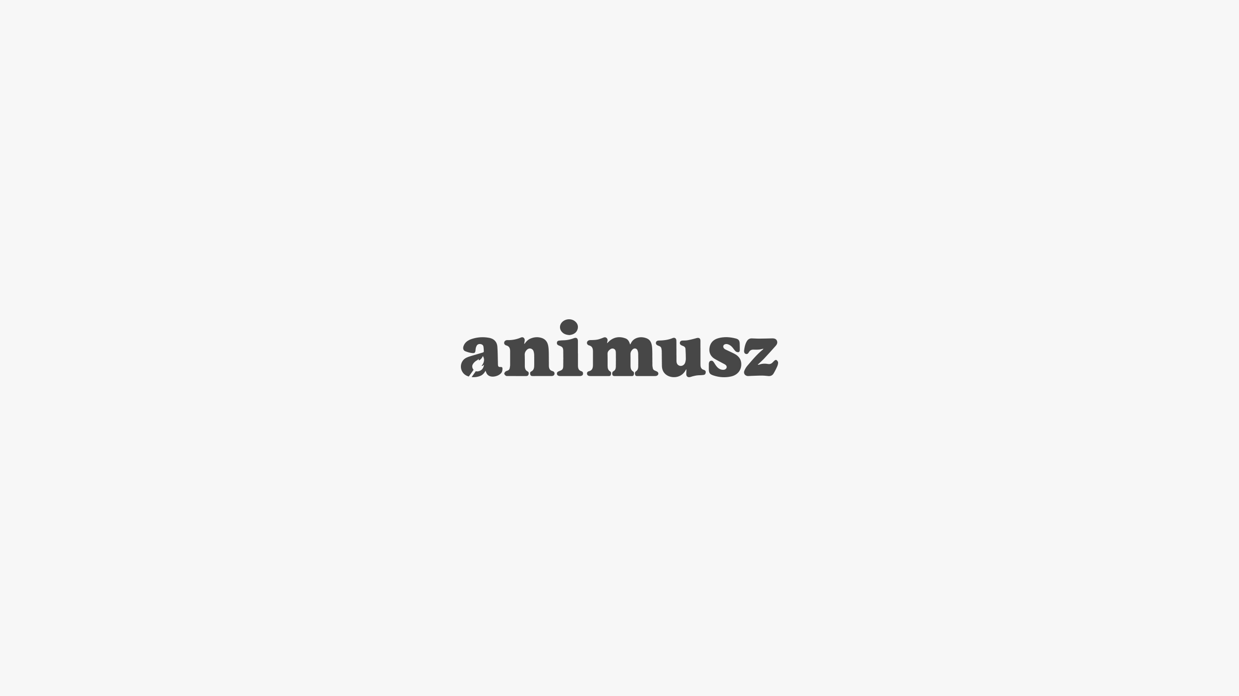 animusz_4